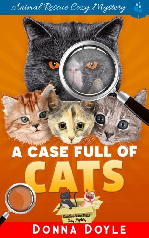 A Case Full of Cats
